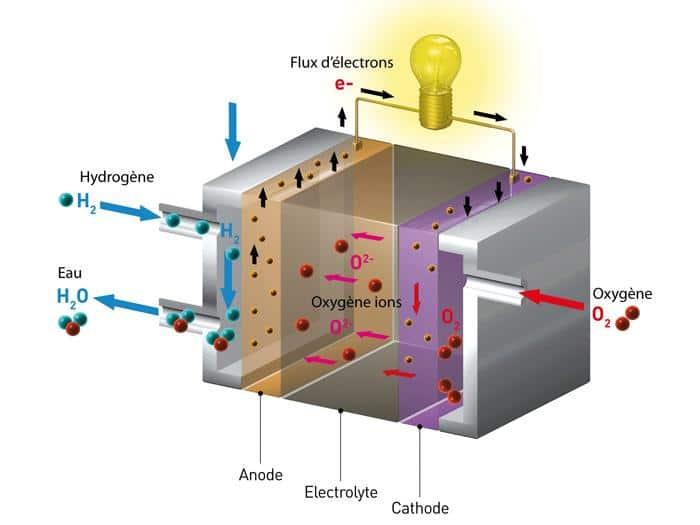 Schéma de fonctionnement d'une pile à combustible