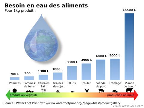 Le besoin en eau en fonction de nos différents aliments